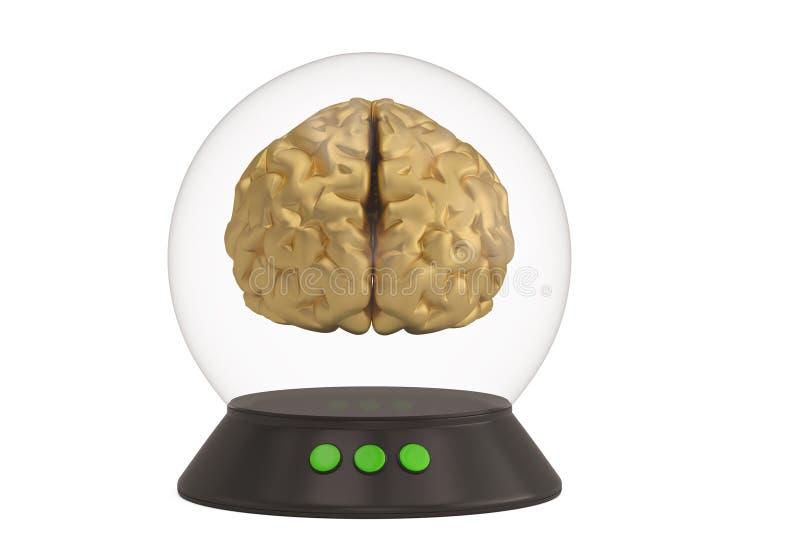 Szklany dzwon z bazą i mózg odizolowywający na białej tła 3D ilustracji ilustracji