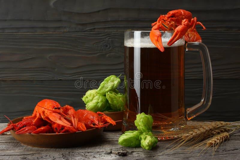 Szklany piwo z raków i chmielu rożkami na ciemnym drewnianym tle Piwny browaru pojęcie tła piwo zawiera gradientową siatkę zdjęcie royalty free