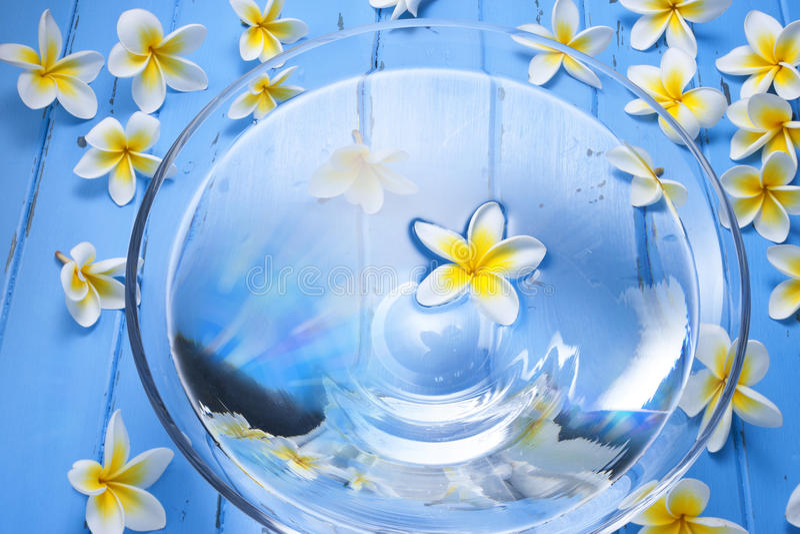 Zdrojów kwiatów wody pucharu traktowanie zdjęcia royalty free