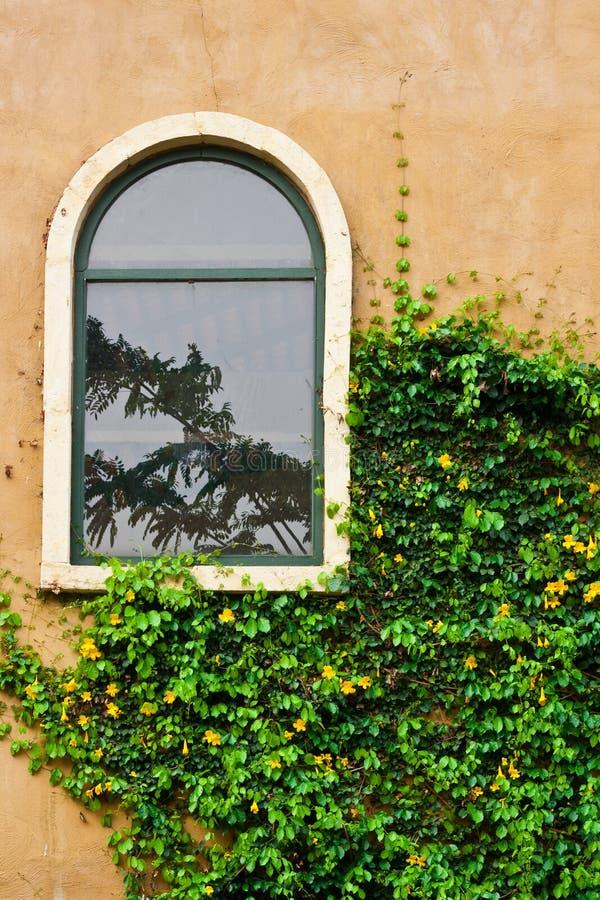 Szklany rocznika okno fotografia stock