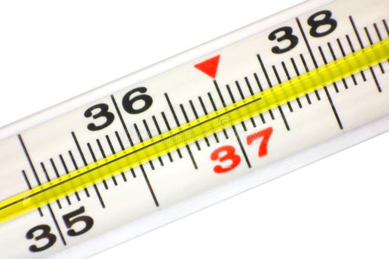 Szklany rtęć termometr zdjęcie royalty free
