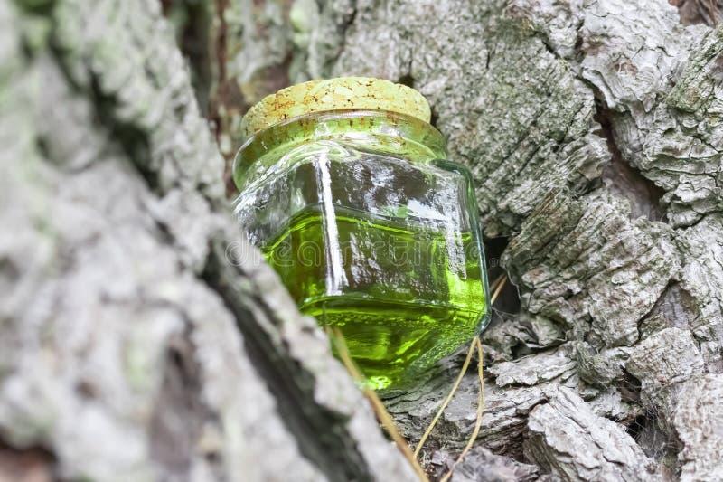 Szklany słój z drewnianą pokrywkową połówką wypełniającą z zielonożółtym nektaru olejem Ja lokalizuje na gałąź drzewo zdjęcia royalty free
