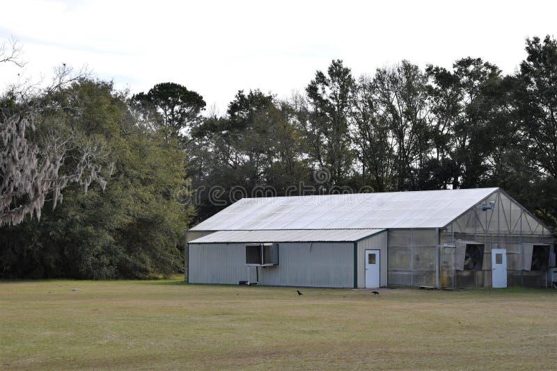 Szklarnia przy Charleston Herbacianą plantacją fotografia stock
