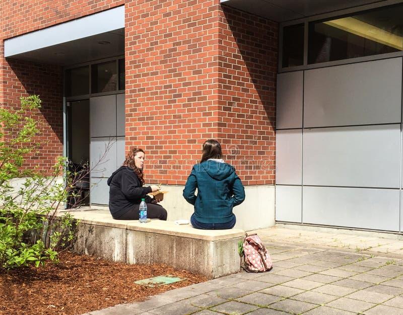 Szkoła wyższa przyjaciele opowiada nad plenerowym lunchem na wiosna dniu obrazy royalty free