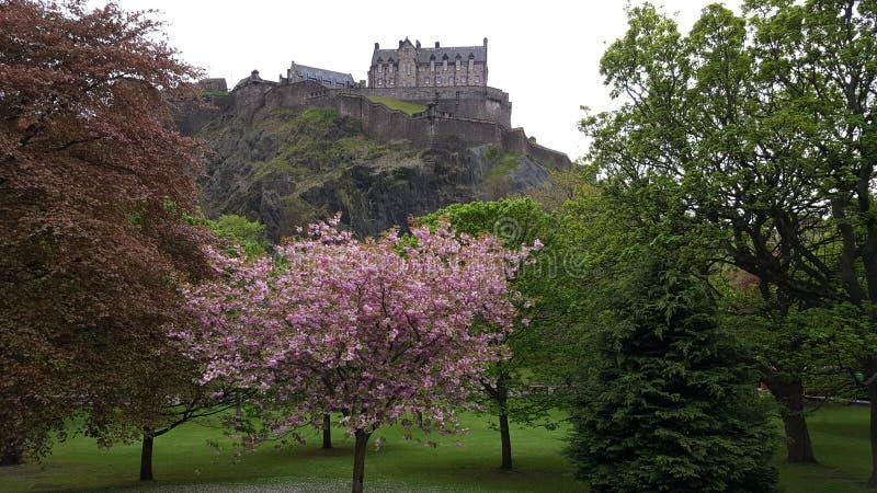 Szkocja uk Edinburgh Glasgow zdjęcie royalty free