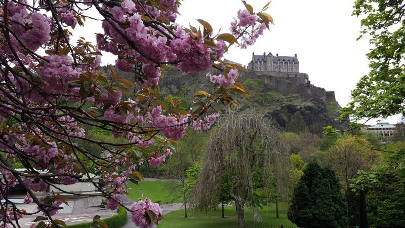 Szkocja uk Edinburgh Glasgow zdjęcia royalty free