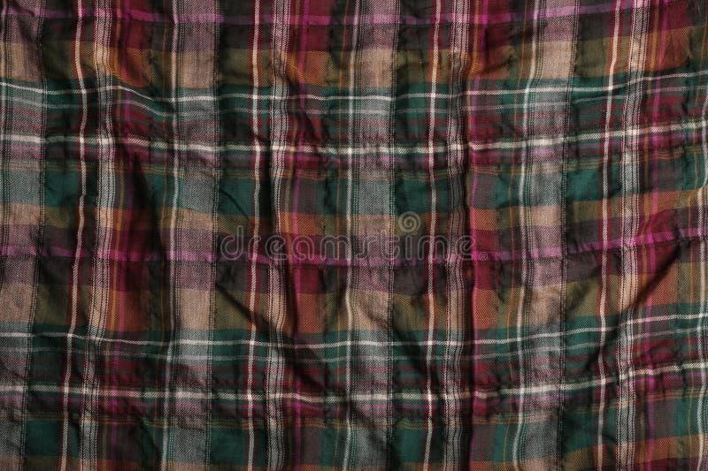 Szkocka komórka fotografia royalty free