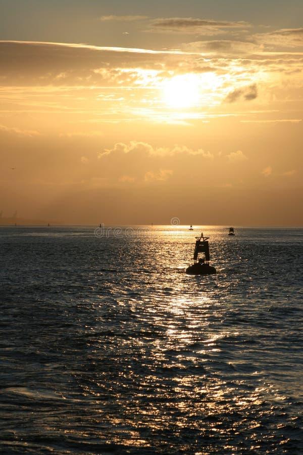 szkocka słońca zdjęcia royalty free