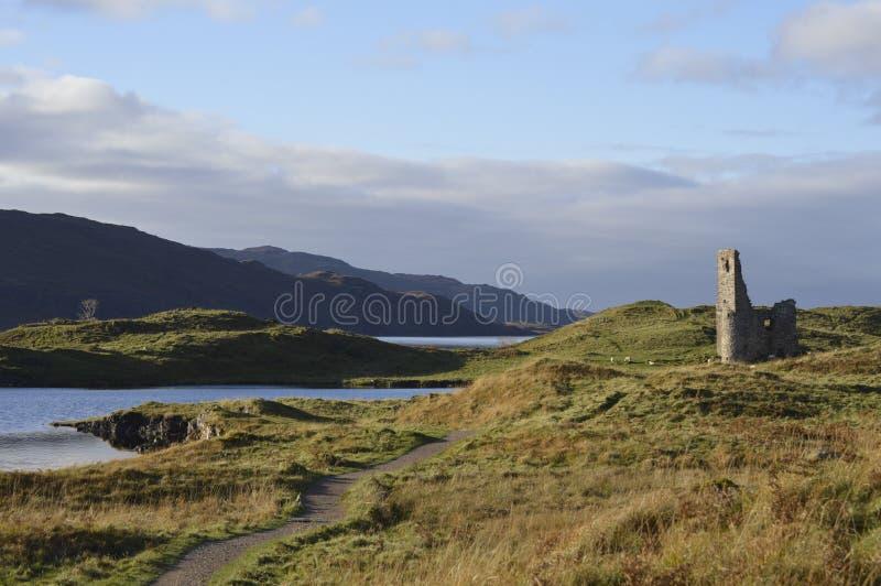 Szkocka urocza natura, parki i przyroda, zdjęcie royalty free