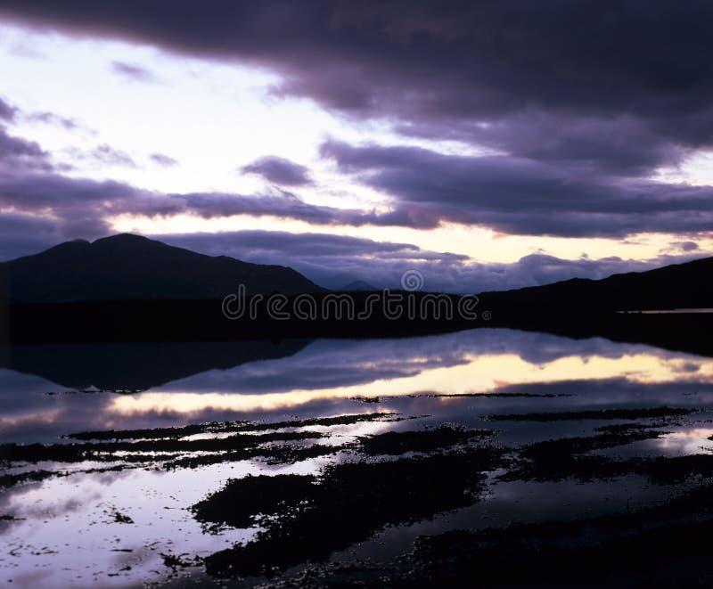 szkocka z fotografia stock