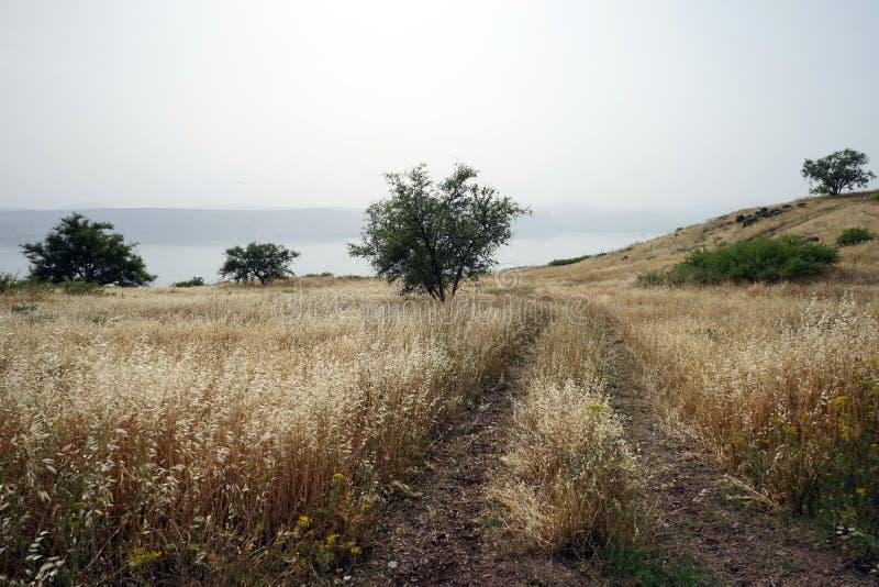 Szlakowy pobliski jezioro zdjęcia stock