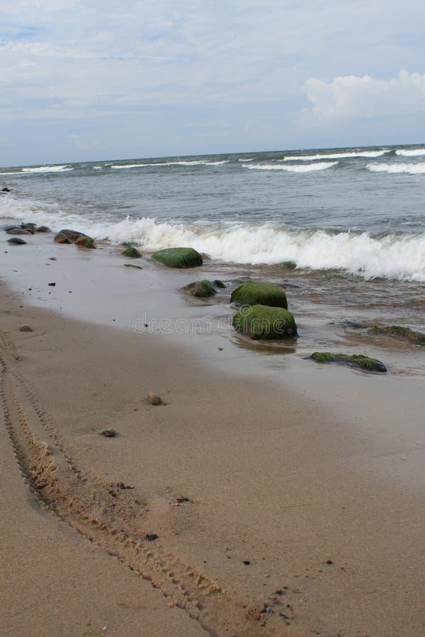 Szlakowy rower toczy wewnątrz piasek, morze bałtyckie, Hel, Polska zdjęcie royalty free