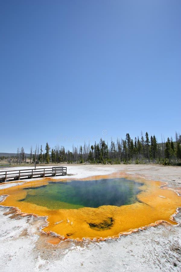 szmaragdowa gorąca basen wiosny Yellowstone zdjęcie royalty free