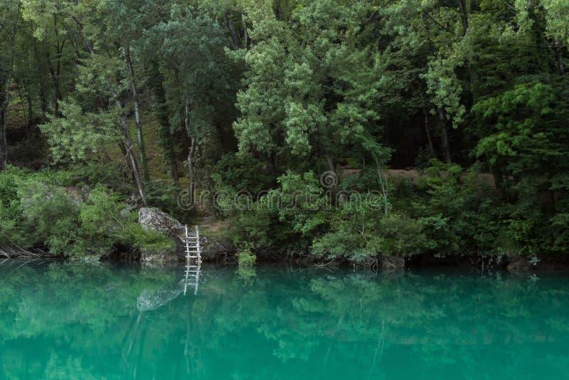 Szmaragdowa rzeka obraz royalty free