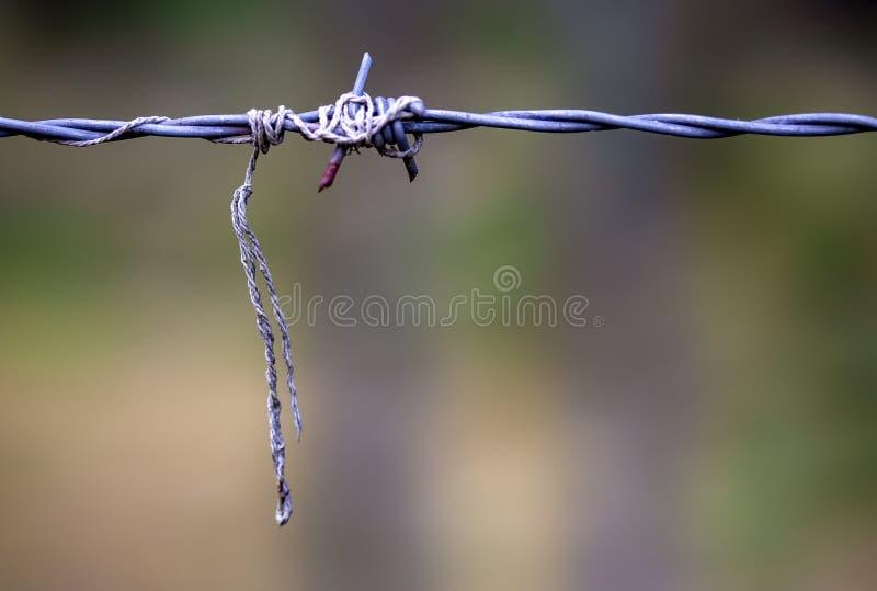 Sznurek czochrający wokoło drutu kolczastego zdjęcie royalty free