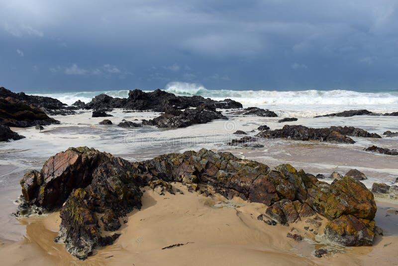 Szorstcy morza z skalistym przedpolem zdjęcie royalty free