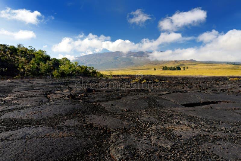 Szorstka powierzchnia zamarznięta lawa po Mauna Loa wulkanu erupci na Dużej wyspie, Hawaje obraz royalty free