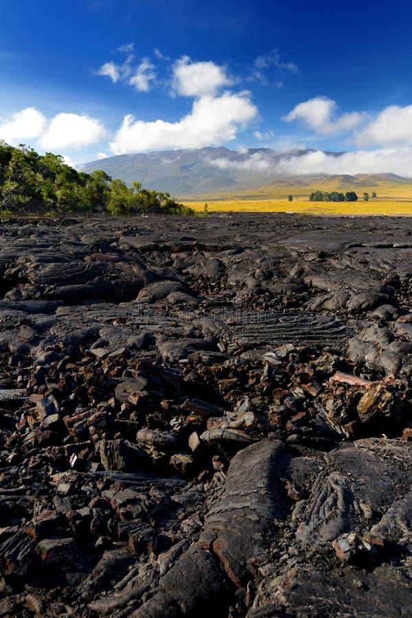 Szorstka powierzchnia zamarznięta lawa po Mauna Loa wulkanu erupci na Dużej wyspie, Hawaje obrazy stock