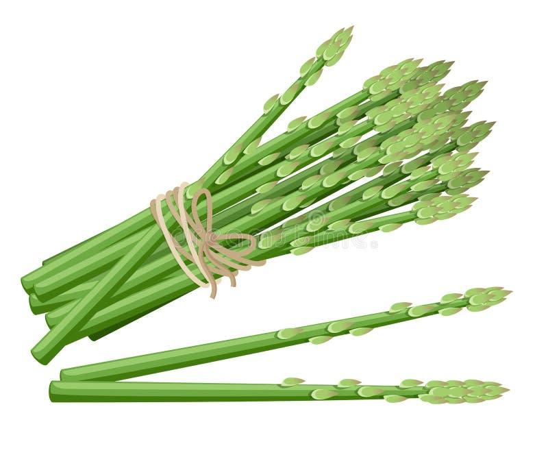 Szparagowa jarzynowa roślina Wektorowa ilustracja wiązka szparagowi trzony Wektorowa ilustracja dla dekoracyjnego plakata, emblem ilustracja wektor
