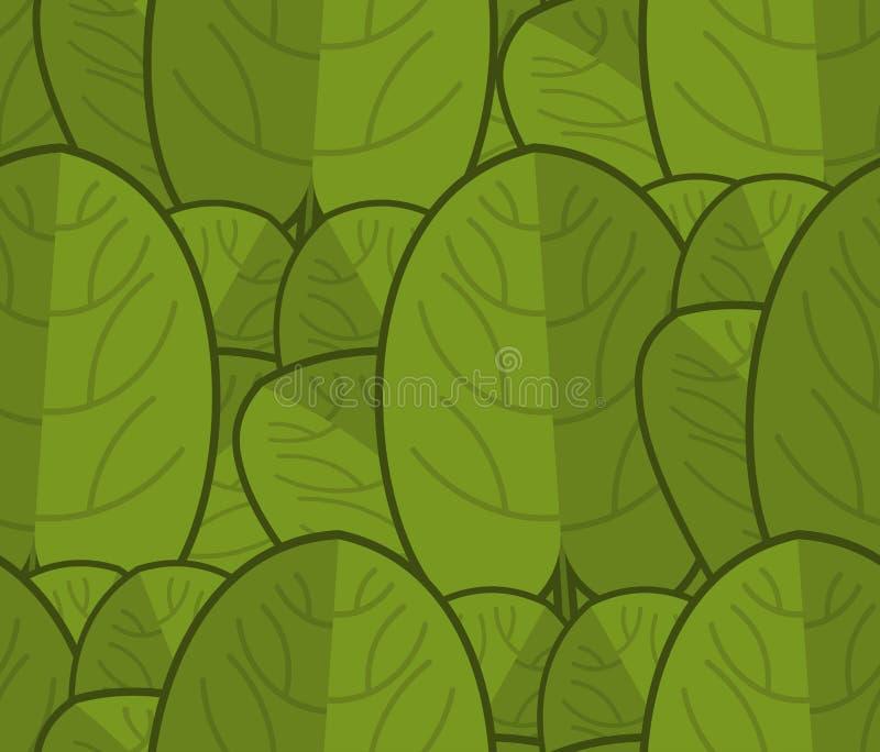 Szpinaka bezszwowy wzór Świeży zielony ornament Zielony sałaty te ilustracja wektor