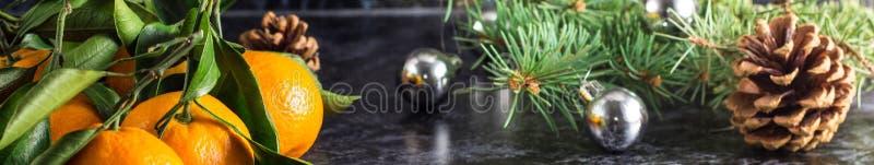 Sztandar Bożenarodzeniowi pomarańczowi tangerines z zieleń liśćmi i jedlinowym drzewem na ciemnym tle z kopii przestrzenią zdjęcie royalty free