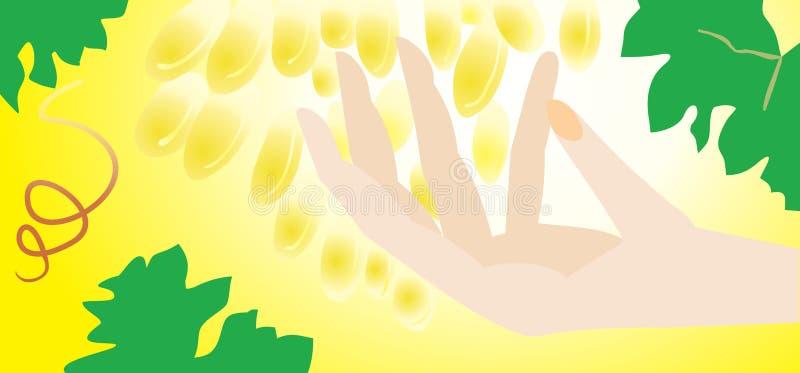 sztandaru ręki wina kobieta ilustracji