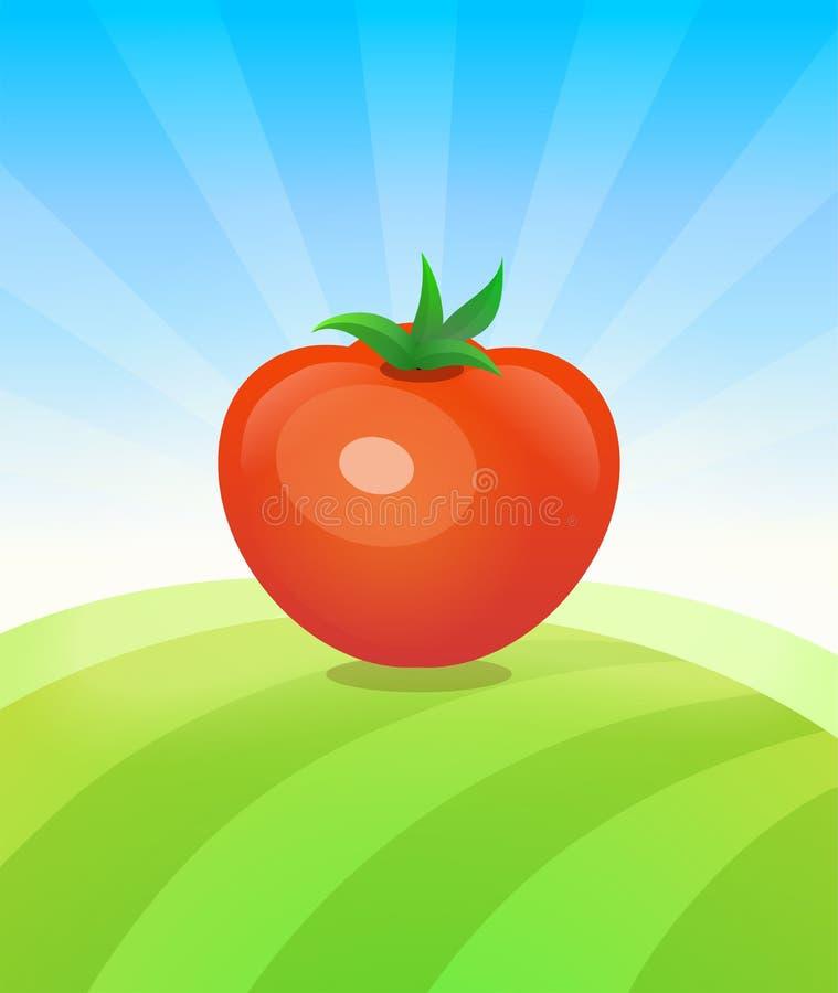 Sztandaru szablon z pomidorem - warzywa handluj? plakat ilustracja wektor