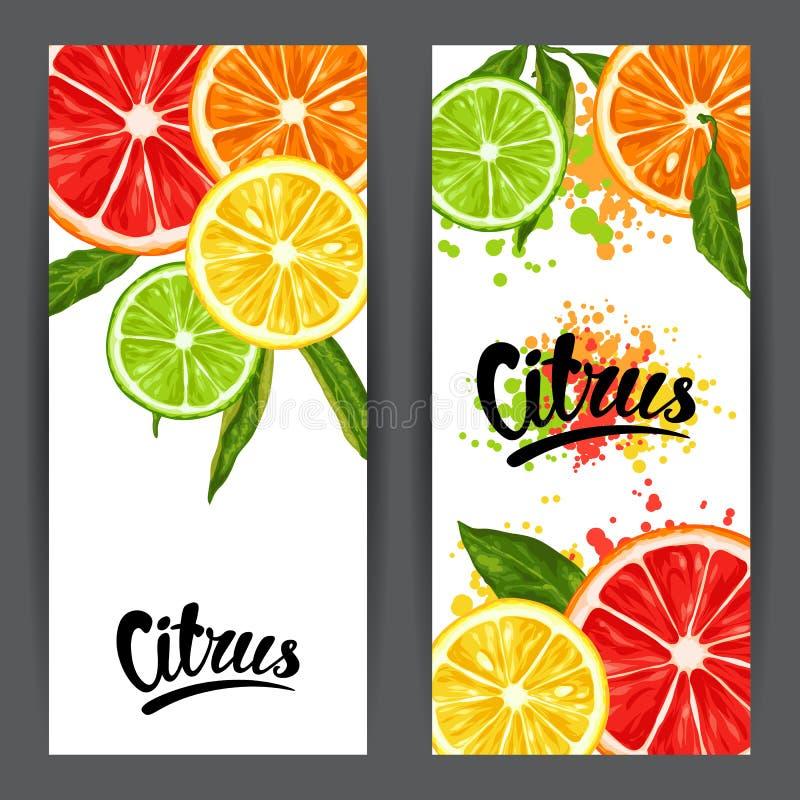 Sztandary z cytrus owoc plasterkami Mieszanka grapefruitowa i pomarańczowa cytryny wapno royalty ilustracja