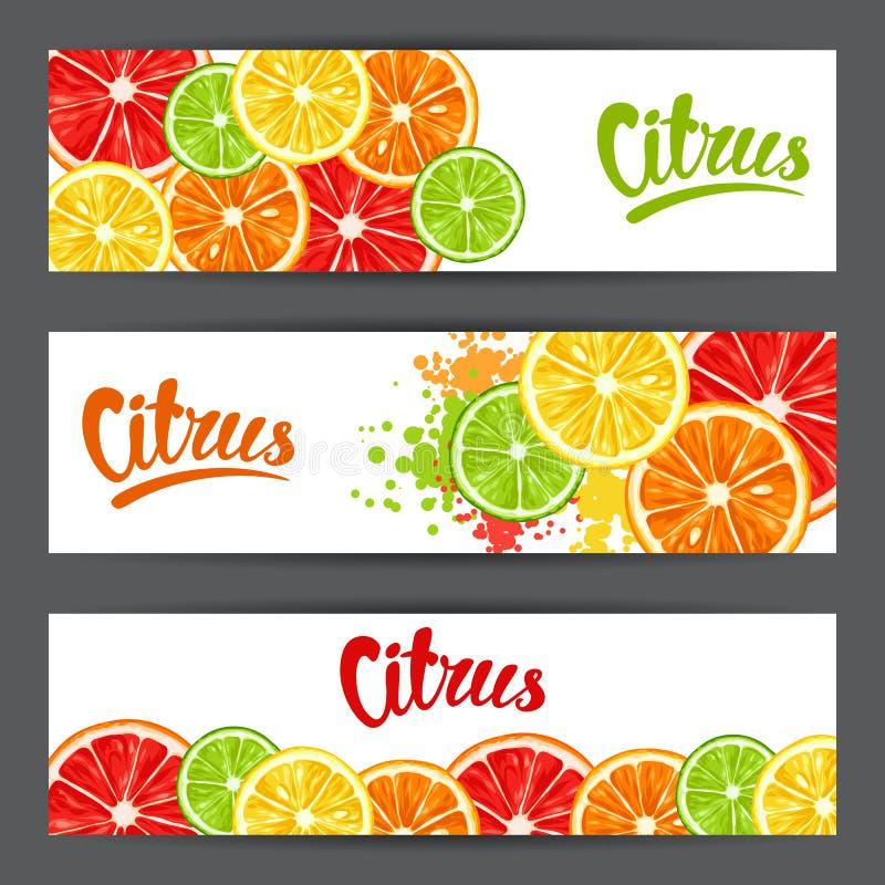 Sztandary z cytrus owoc plasterkami Mieszanka grapefruitowa i pomarańczowa cytryny wapno ilustracja wektor