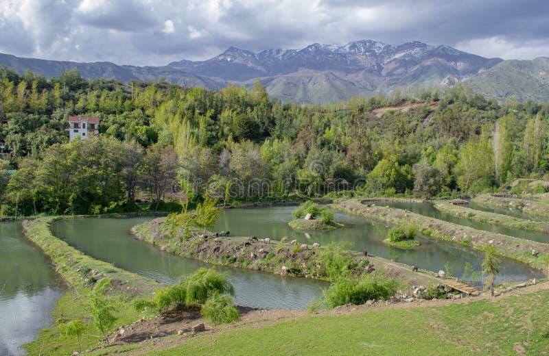 Sztuczne laguny dla łowić zdjęcie stock