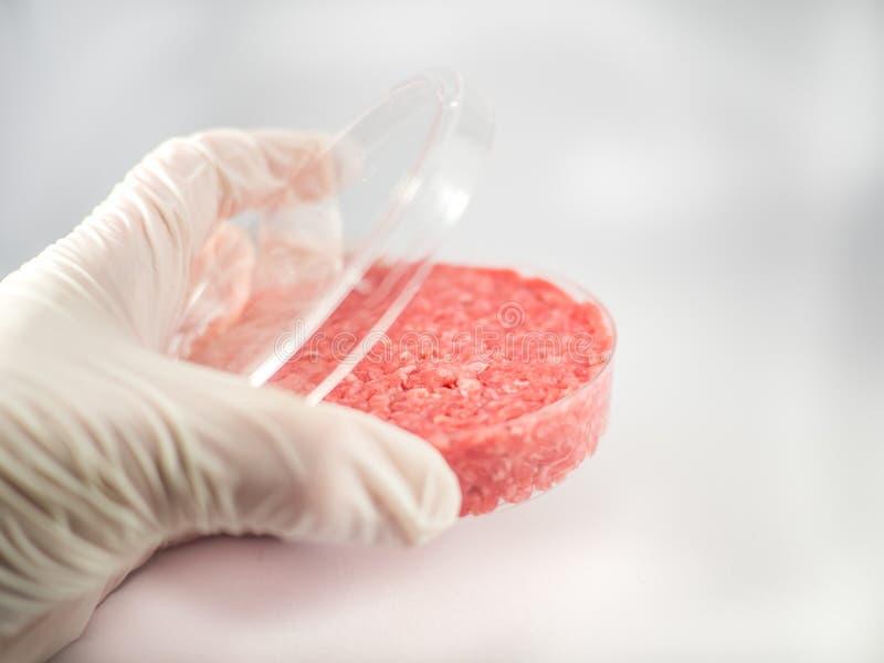 Sztuczny mięsa badanie obraz royalty free