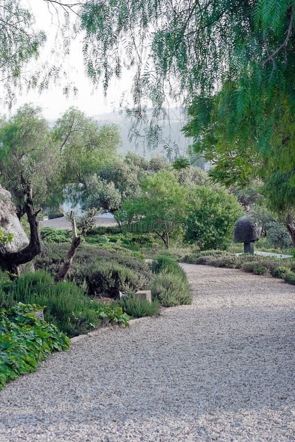 sztuka żwiru ścieżka ogrodowa obraz royalty free