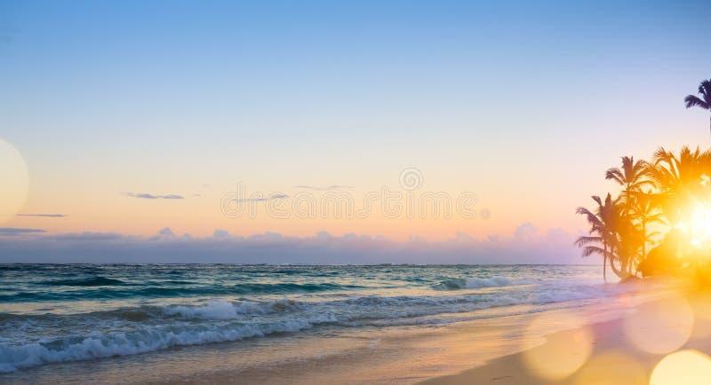 Sztuka Piękny wschód słońca nad tropikalną plażą obraz stock