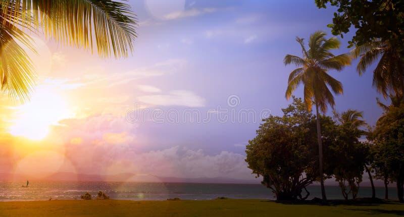 Sztuka Piękny wschód słońca nad tropikalną plażą obrazy royalty free