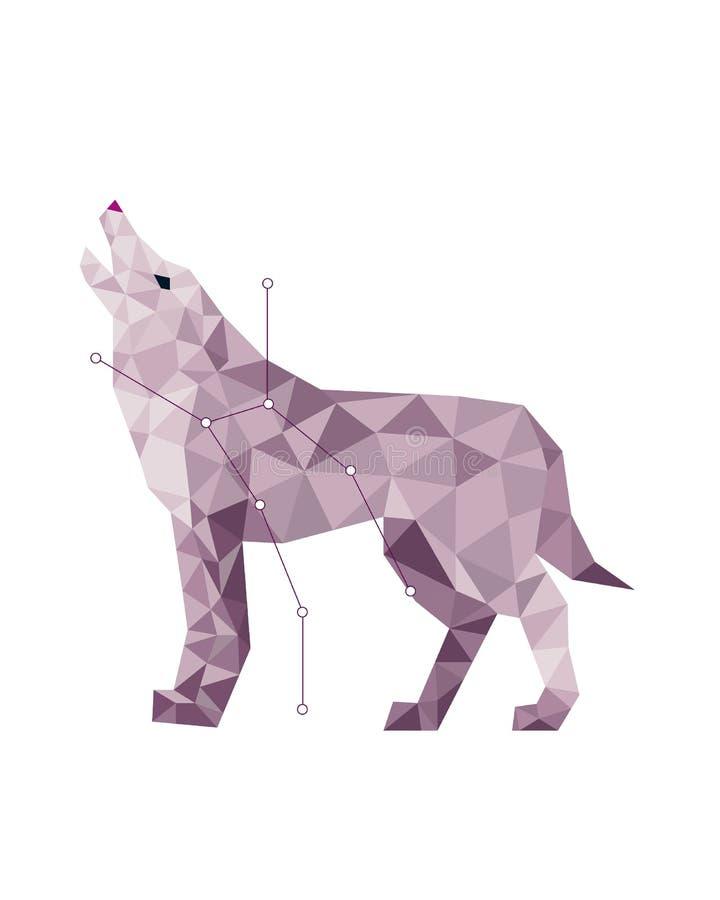 Sztuka szary wilk w poligonalnym stylu na białym tle ilustracja wektor