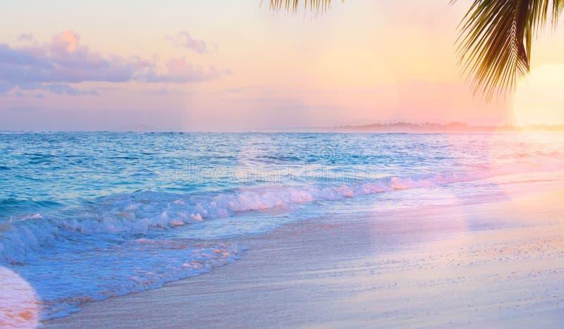 Sztuka wakacje drims; Piękny zmierzch nad tropikalnym był obrazy royalty free