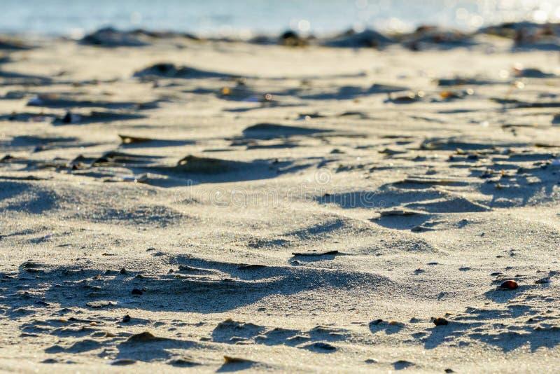 Sztuka wiatr, biel łuska w piasku na plaży zdjęcie stock
