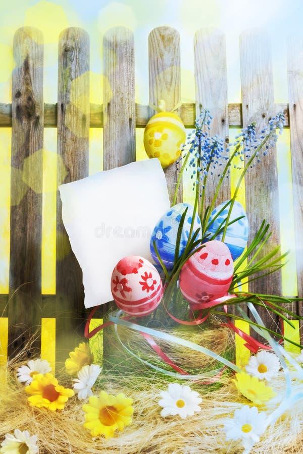 Sztuki Easter tło z ogrodzeniem, jajka, wiosna kwitnie, puste miejsce ca obrazy stock