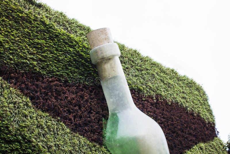 Sztuki instalacja butelka na ścianie z roślinami obraz stock