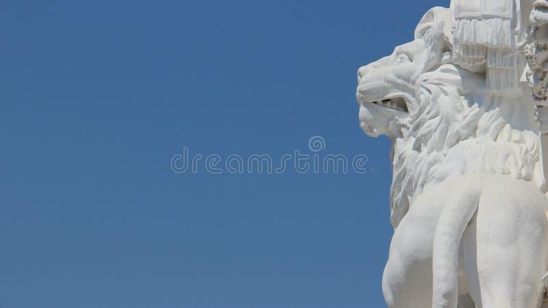 Sztuki Jeden Biały lew Z niebieskich nieb tło obrazy stock