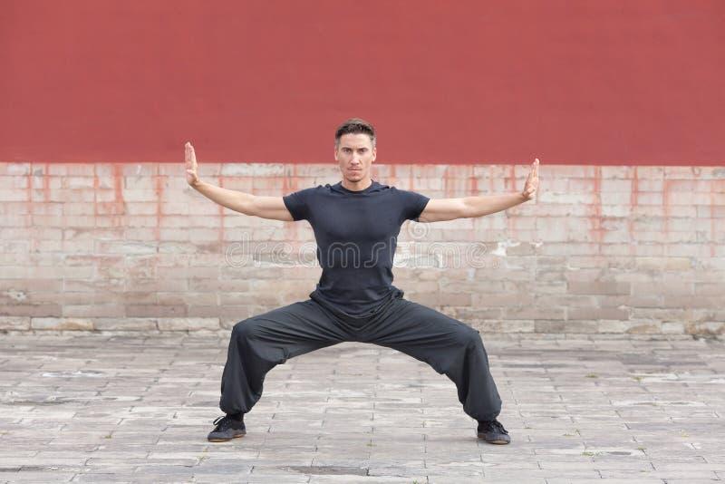 Sztuki samoobrony ćwiczą ćwiczyć przeciw antycznej ścianie, Pekin, Chiny zdjęcia stock
