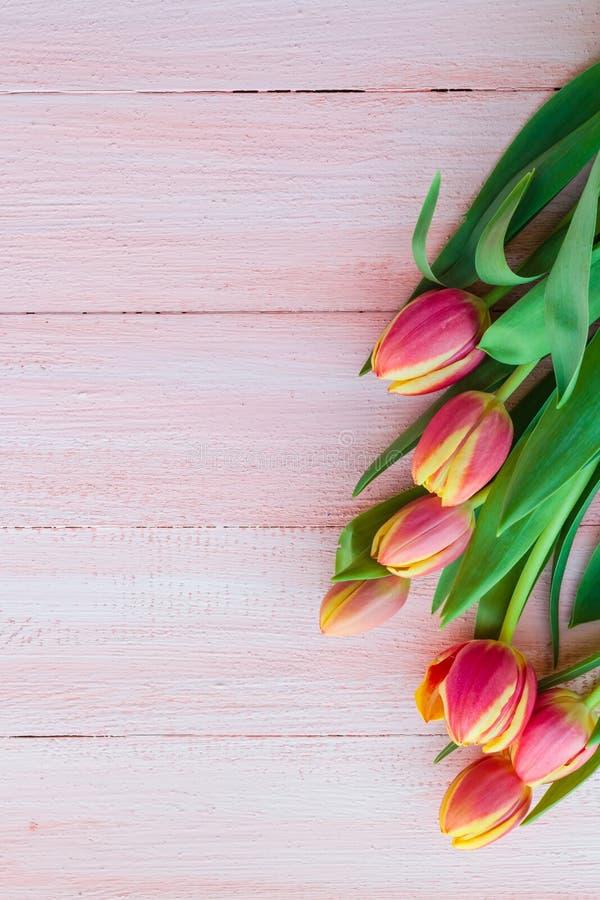 Sztuki tła wiosny abstrakcjonistycznych tulipanów drewniany projekt obraz royalty free