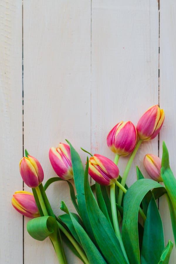 Sztuki tła wiosny abstrakcjonistycznych tulipanów drewniany projekt zdjęcia stock