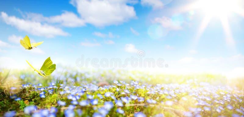 Sztuki Wielkanocny tło z świeżymi wiosna kwiatami obrazy royalty free