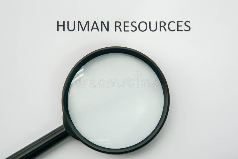 Szuka działy zasobów ludzkich dla firmy i rekrutuje powiększać - szkło obrazy royalty free