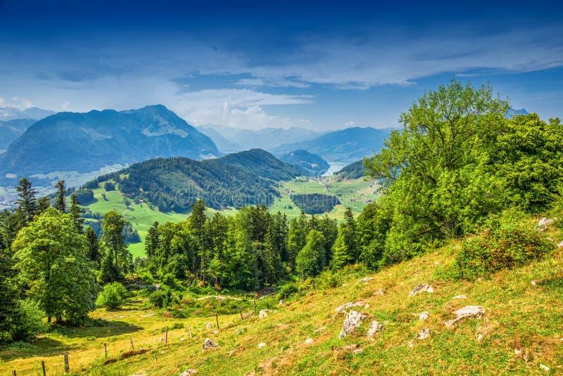 Szwajcarscy Alps blisko Burgenstock z widokiem Jeziorna lucerny i Pilatus g fotografia stock