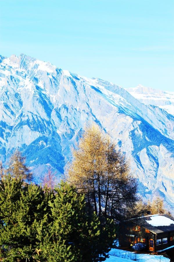 Szwajcarscy Alps i mała jata zdjęcia royalty free