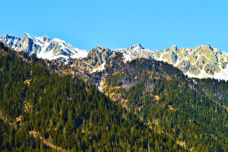 Szwajcarscy Alps w wiośnie obraz stock