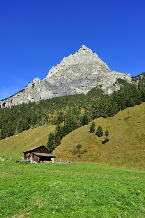Szwajcarska scena zdjęcie royalty free
