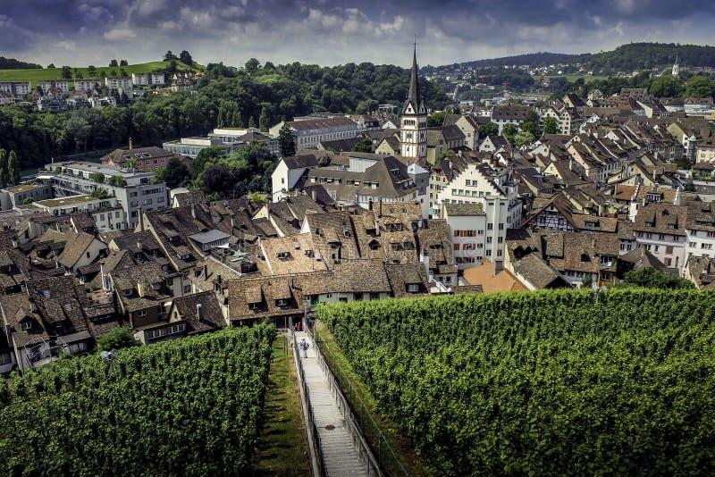 Szwajcarska wioska i winnica obrazy royalty free